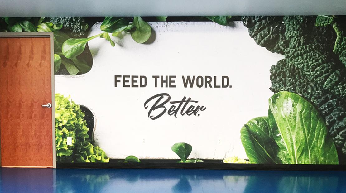 digital wallpaper printing large format wallpaper wallpaper visuals large format printing super color digital